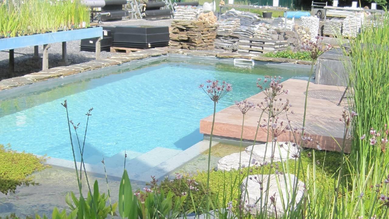 Nos bassin en été